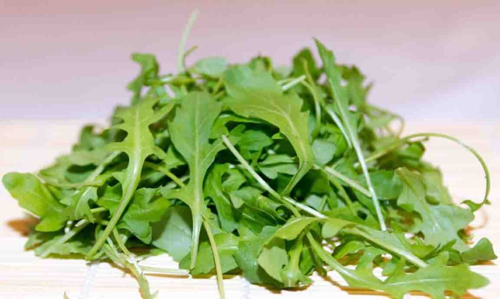 self-seeding-crops-arugula